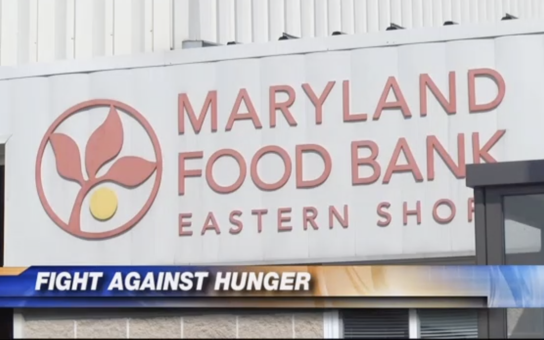 Statewide Media Campaign Showcases the Fight to End Hunger